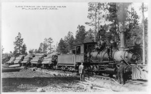 Logging Train in Woods Near Flagstaff