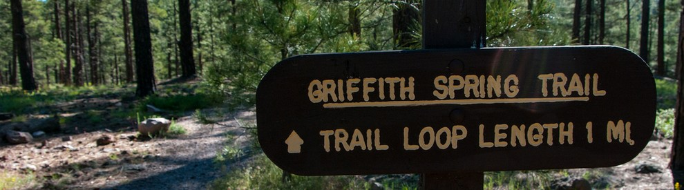 Griffith Spring Loop Trail Flagstaff